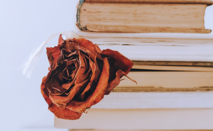 Future Publications: When I Come Home Again by CarolineScott